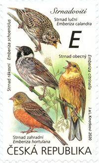 捷克9月9日发行我们周围的鸣禽邮票
